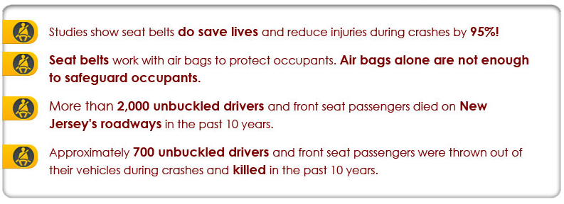 seatbeltfacts